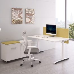 Office Staff workstation
