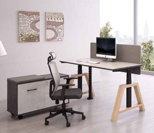 Office Staff workstation