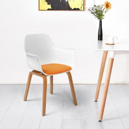 Leisure Wooden Plastics Chairs