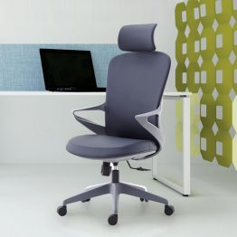 Ergonomic Office Chairs Swivel