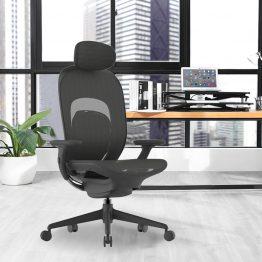 Chaise de bureau Executive Ergonomi