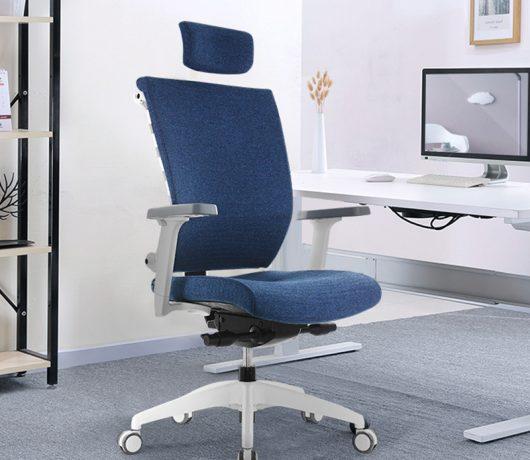 Executive Office Chair Ergonomic
