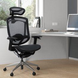 Mesh Chair Office Ergonomic