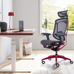 Ergonomic Office Mesh Chairs